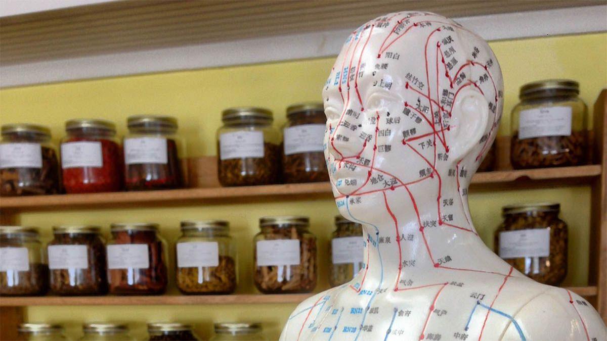 akupunktur-punkte-koerper