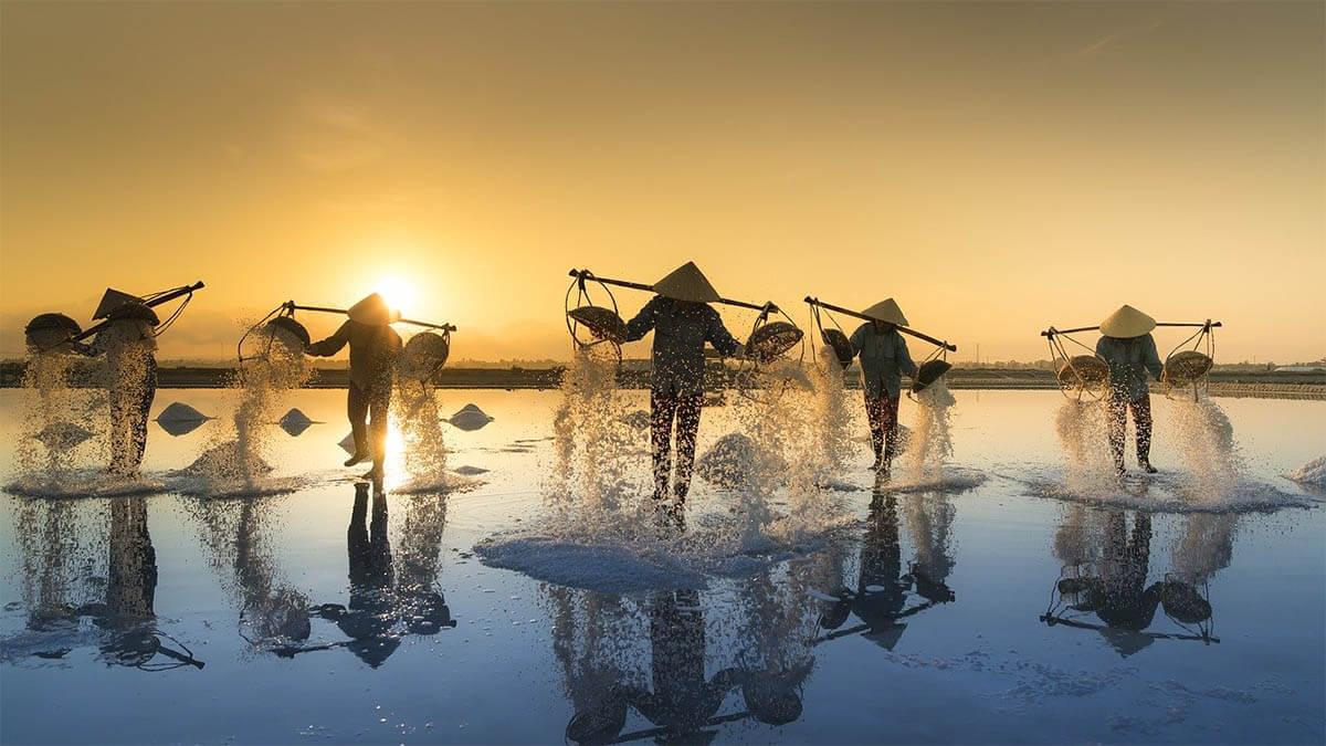 arbeit-salzernte-vietnam