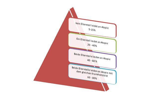 atopie risikopyramide