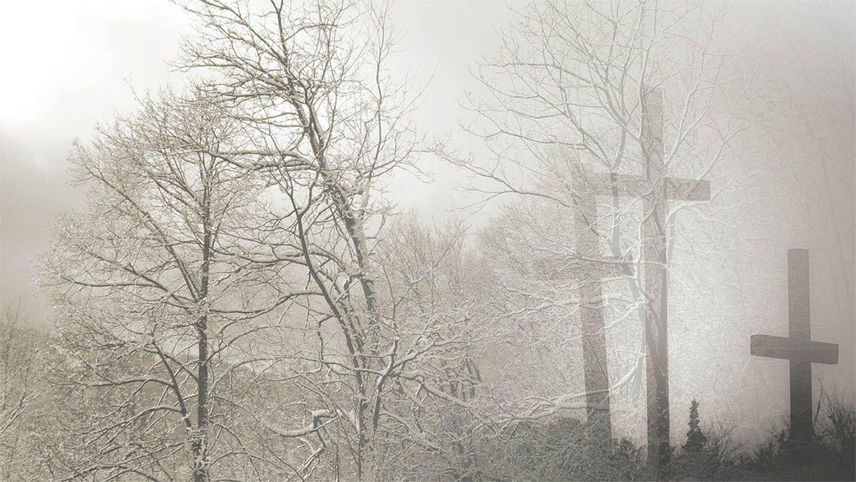 baum-grabstein-nebel-schwarz-weiss