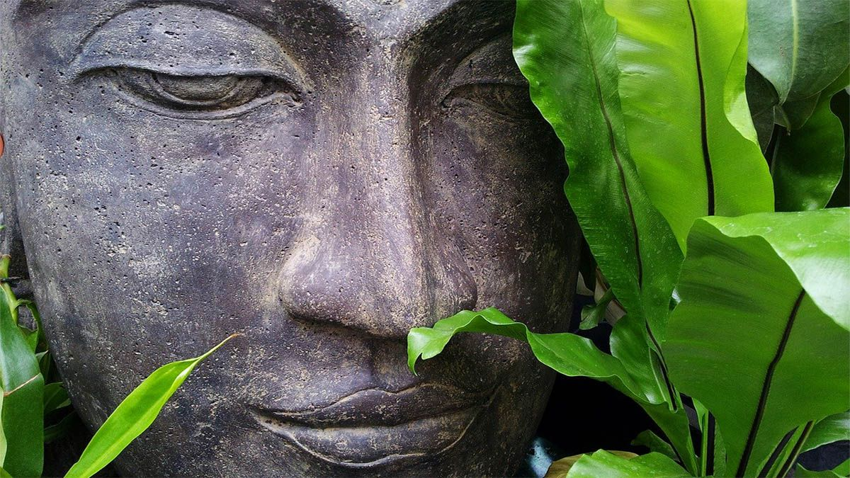 buddha statue blaetter