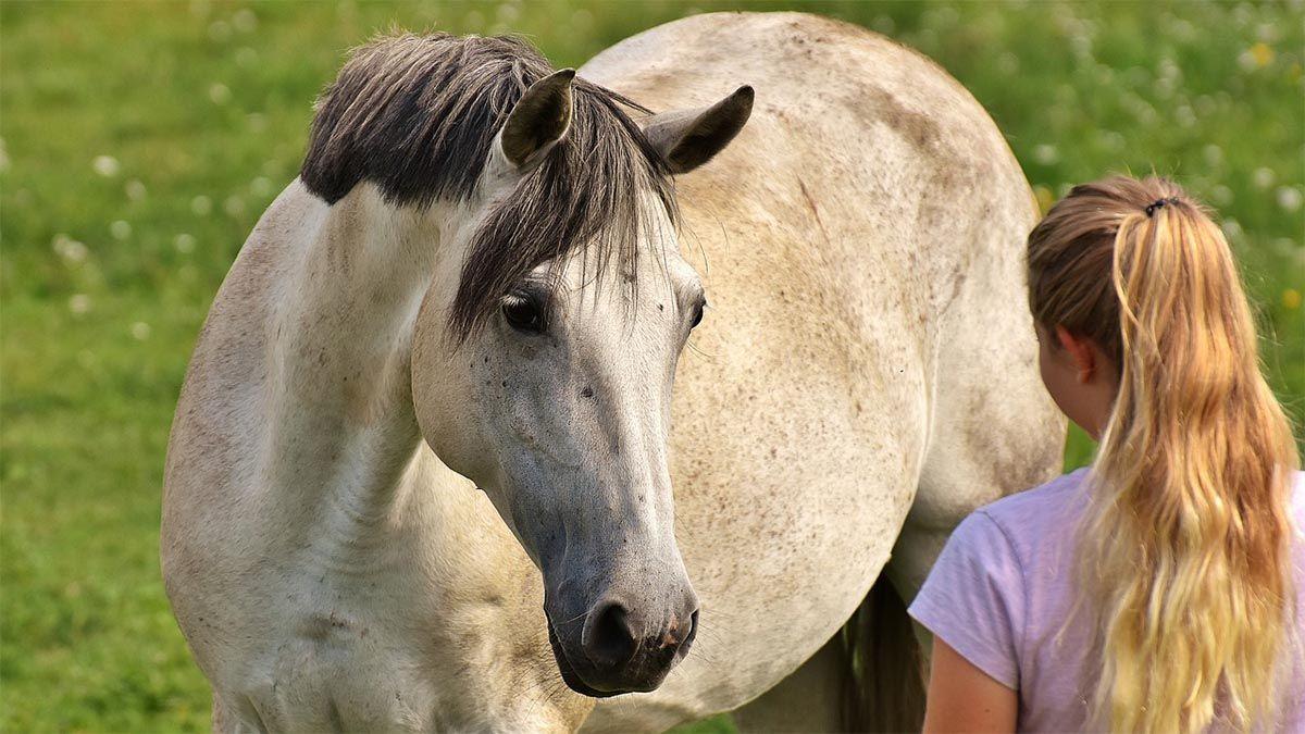 frau-mit-pferd-schauen-sich-an