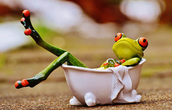frosch nimmt ein bad klein