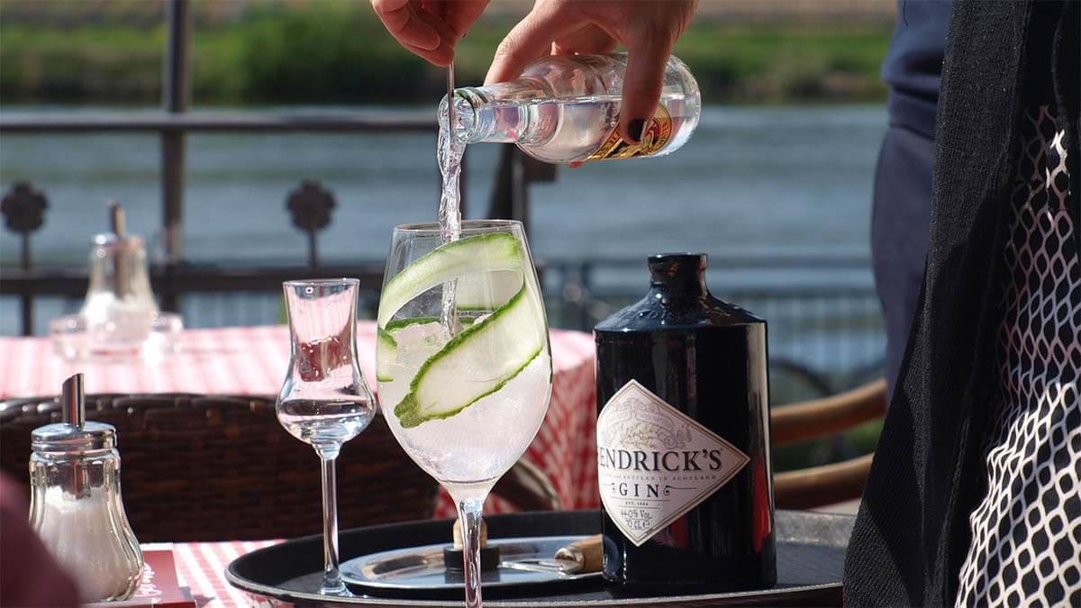 gin tonic an