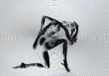 hypnose trance illusion