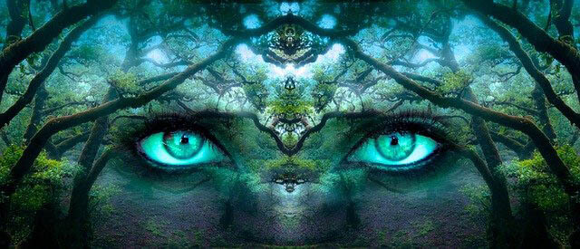 illusion wald augen klein