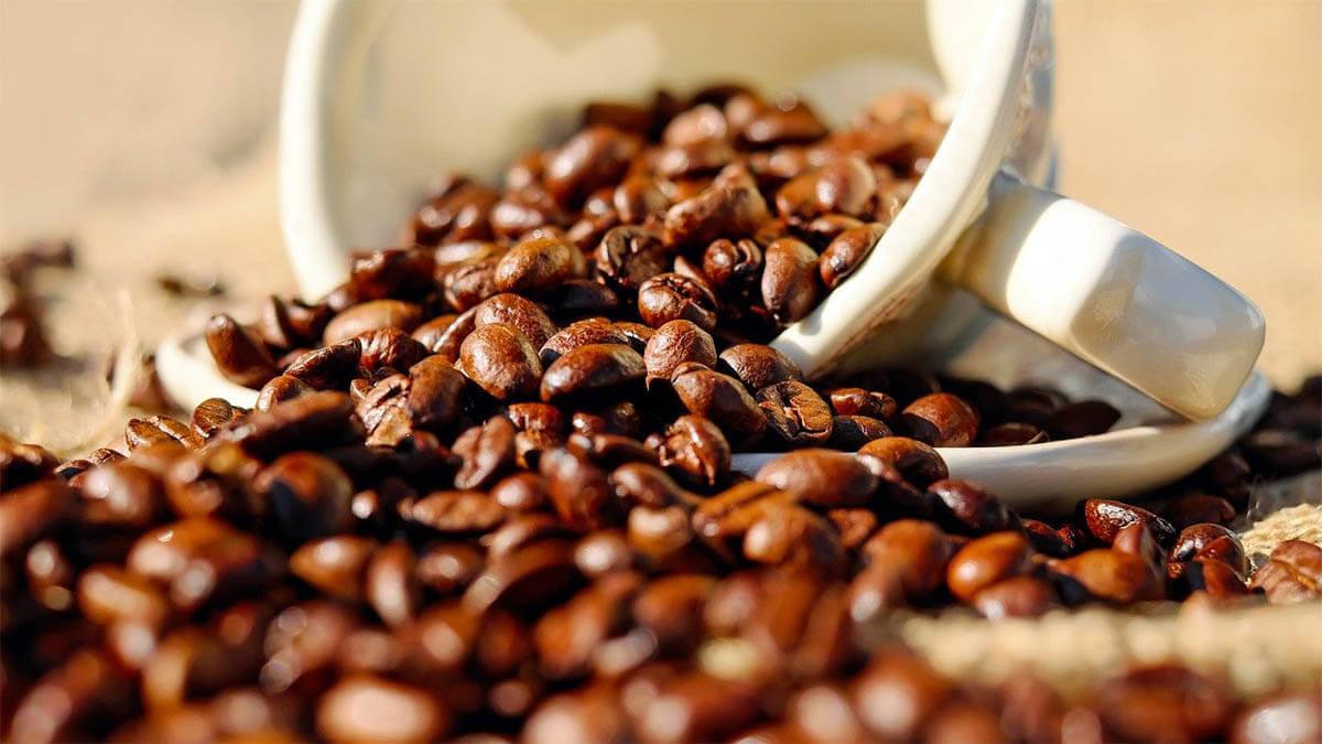 kaffeetasse-bohnen