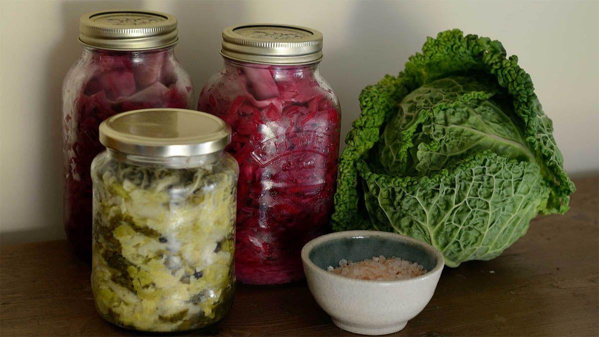 kohl fermentieren