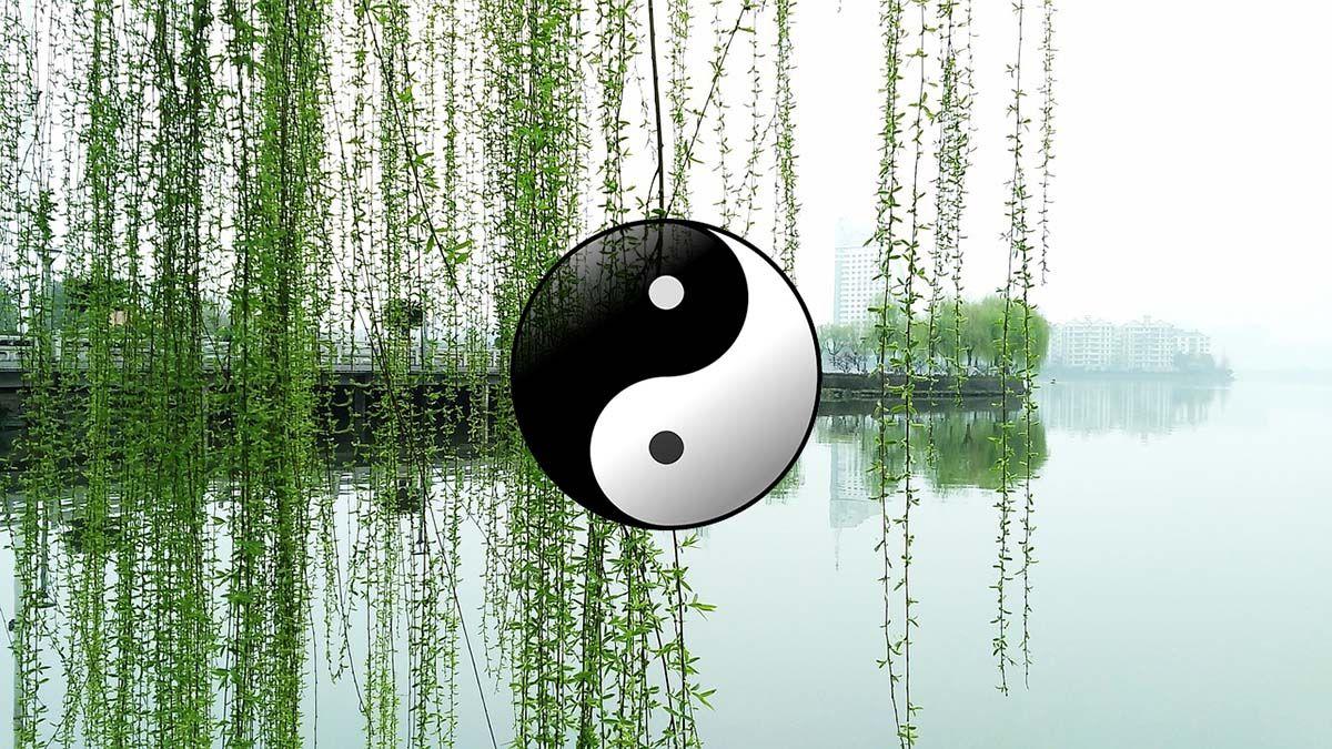 ying-yang-see-hintergrund-gruen