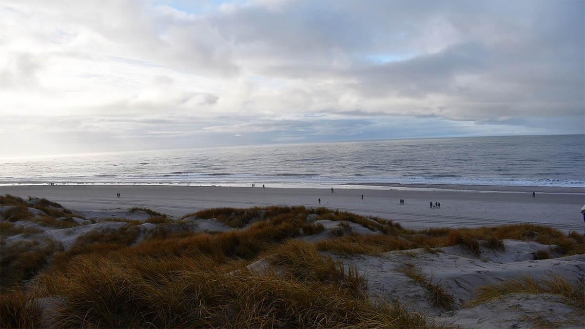 daenemark duenen strand