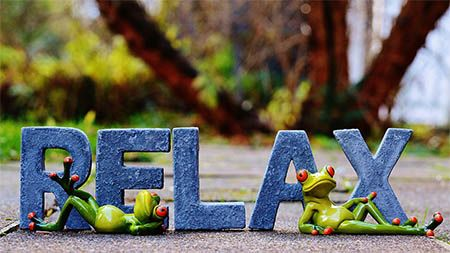 froesche-relax