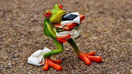 frosch-stress-akten