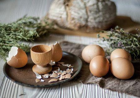 fruehstueck eier