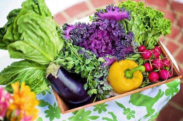 gemuese und salat klein