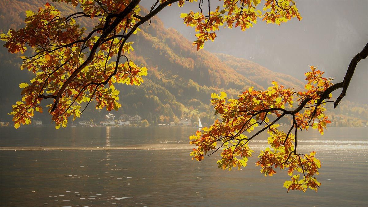 herbst see boot