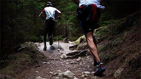joggen-berg-trail