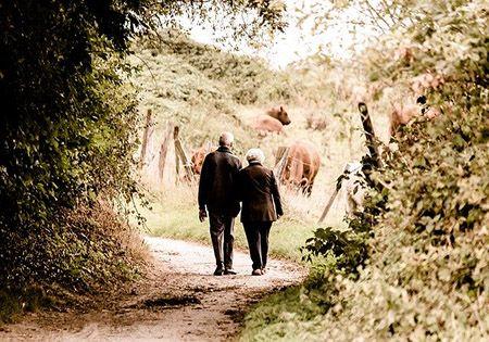 oma opa spazieren waldweg
