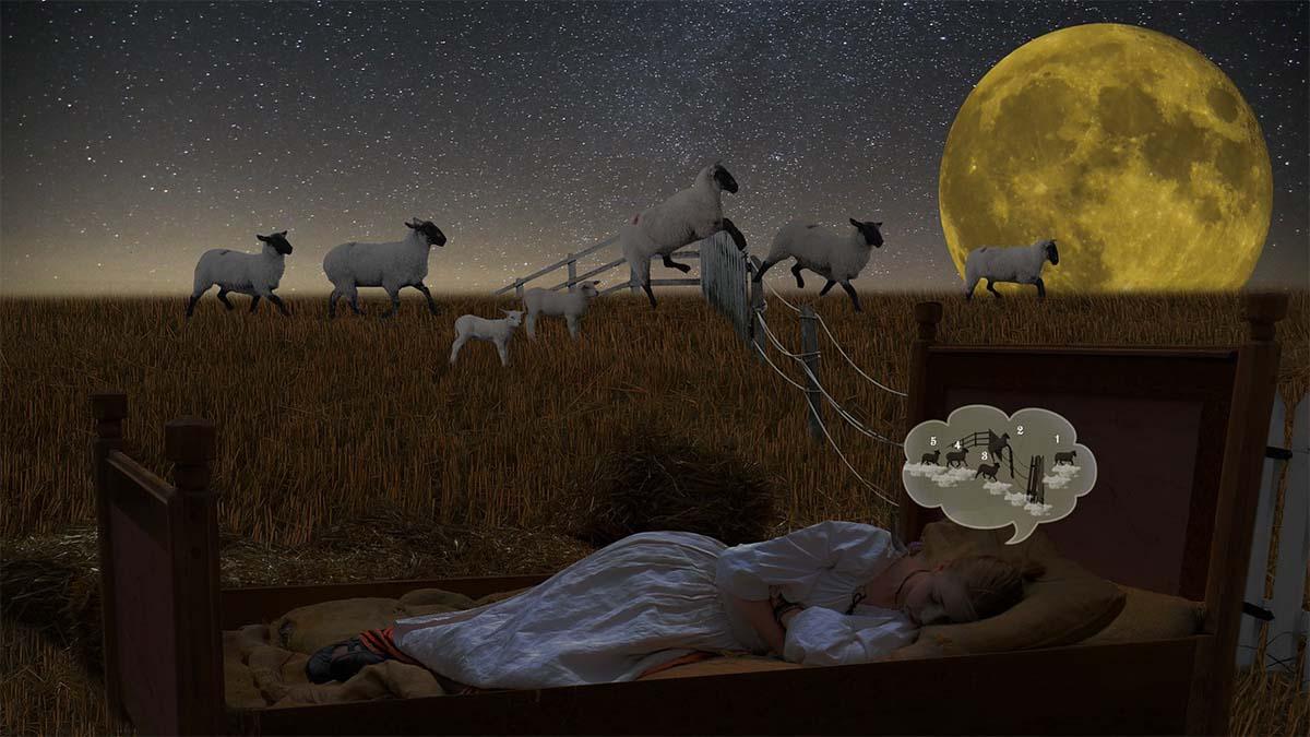 schlafen-schaefchen-zaehlen