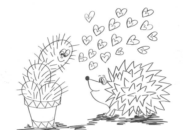screenshot igel kaktus