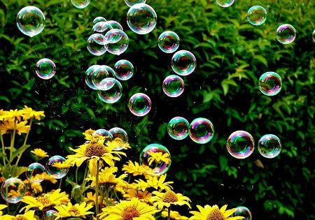 sonnenblumen seifenblasen
