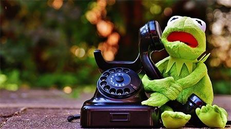 frosch-telefoniert