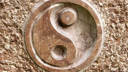 ying-yang-stein