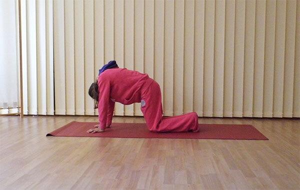 yoga uebung einschlafprobleme katzenbuckel