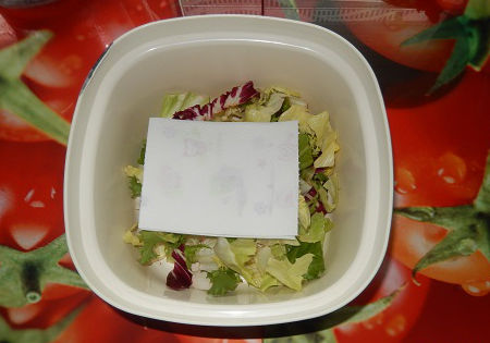 salat aufbewahren