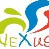 Nexus Coaching Spezialist Fuer Systemische Beratung 2 1503567135