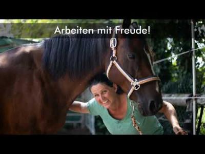 Ausbildungseminar Pferdegestützte Berufe